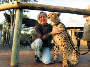 Moll on a recent trip to Africa says hello to Sylvester the cheetah who is the animal ambassador in Zimbabwe. Photo from Moll